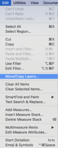 move and copy layers in learning finale